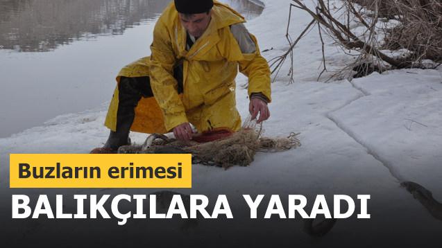 Buzların erimesi balıkçılara yaradı!