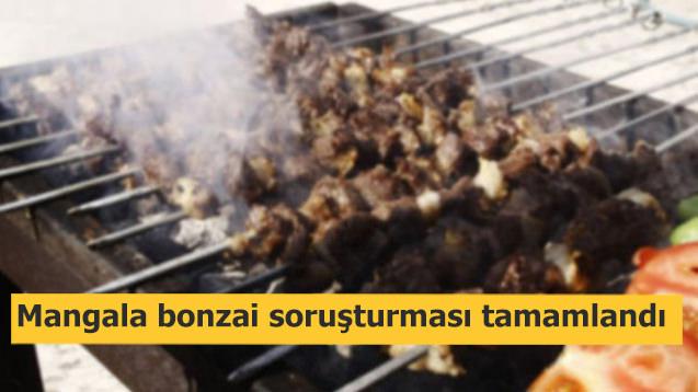 Mangala bonzai soruşturması tamamlandı