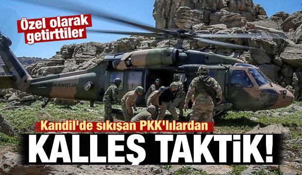 Kandil'de sıkışan PKK'lılardan kalleş taktik!