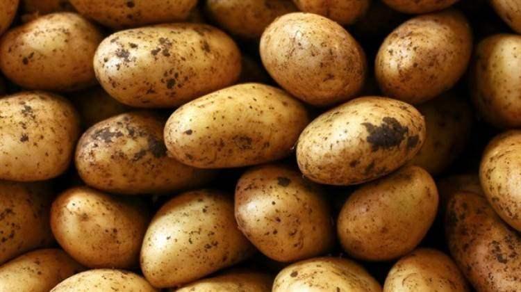 Patatesin kilogram fiyatı yüzde % 94 yükseldi