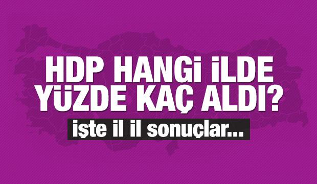 HDP hangi ilde yüzde kaç oy aldı?