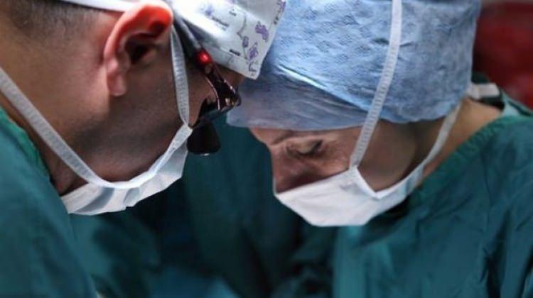 Devlet organ naklinde kesenin ağzını açtı