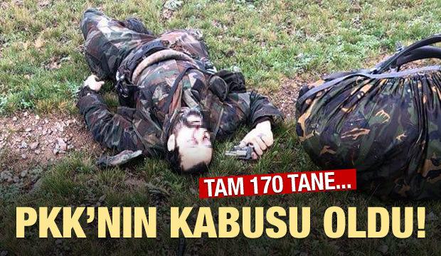 PKK'nın kabusu oldu! 170 sözde sorumlu öldürüldü