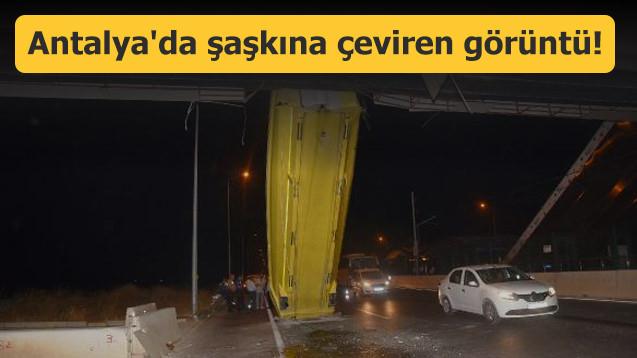 Antalya'da şaşkına çeviren görüntü!