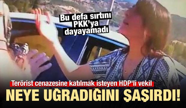 HDP'li vekile başkandan tokat gibi cevap