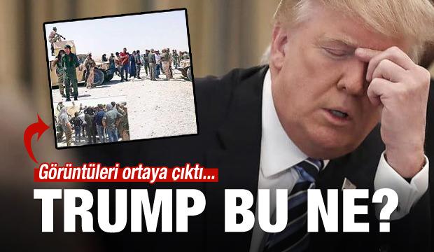 Teröristlere 'Trump' koruması!