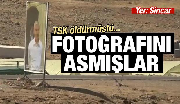 TSK öldürmüştü, fotoğrafını asmışlar…
