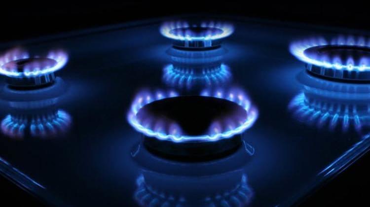 Bakan Dönmez'den doğalgaz müjdesi
