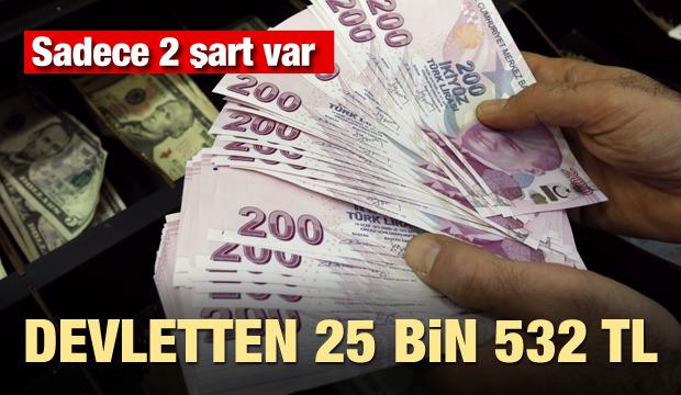 Devletten 25 bin 532 lira! Sadece 2 şartı var