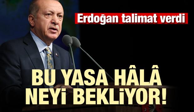 Erdoğan talimat verdi! Bu yasa hâlâ neyi bekliyor