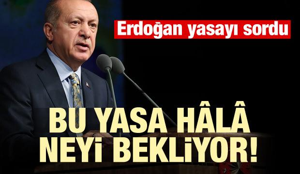 Başkan Erdoğan yasayı sordu!