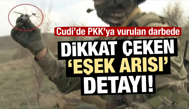 TSK, PKK'ya 'eşek arısı' ile büyük darbe vurdu