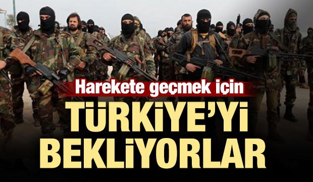 Harekete geçmek için Türkiye'yi bekliyorlar