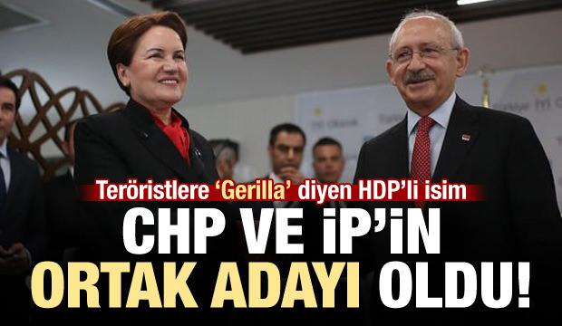 CHP-İP'in Gaziantep adayı: HDP'li Celal Doğan