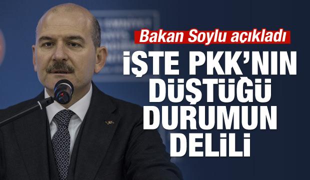 Bakan Soylu açıkladı: PKK'ya ağır darbe!