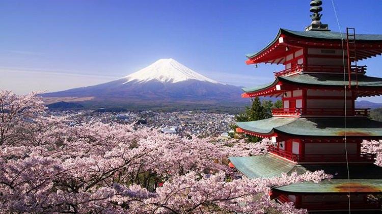 Japonya'da bulundu! 2,5 milyar yıl önceye ait