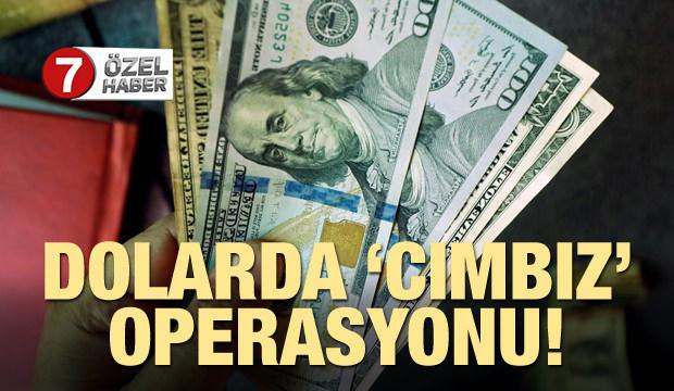 Prof. Dr. Alkin: Dolarda 'cımbız' operasyonu