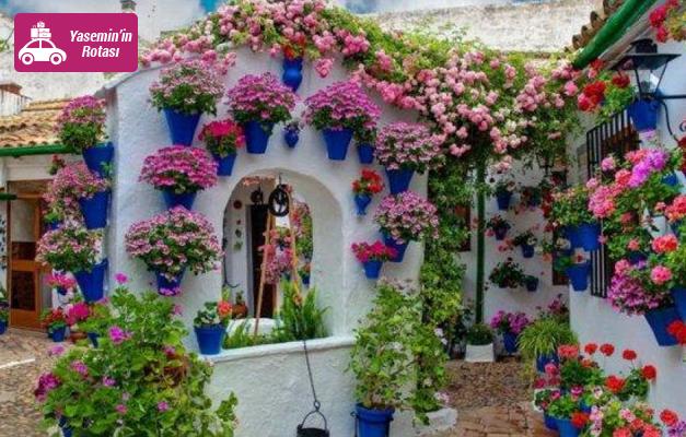 Eğlenceli İzmir çiçek festivalini kaçırmayın!