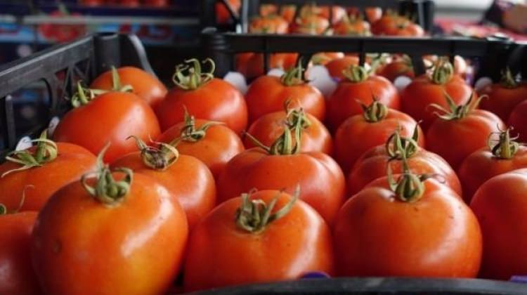 Rusya'ya yapılan domates ihracatı hakkında duyuru