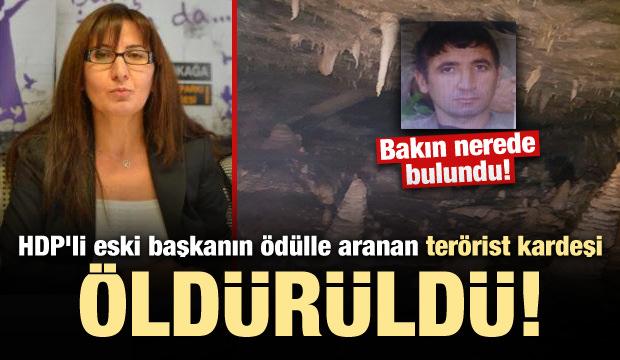 HDP'li eski başkanın ödülle aranan terörist kardeşi öldürüldü