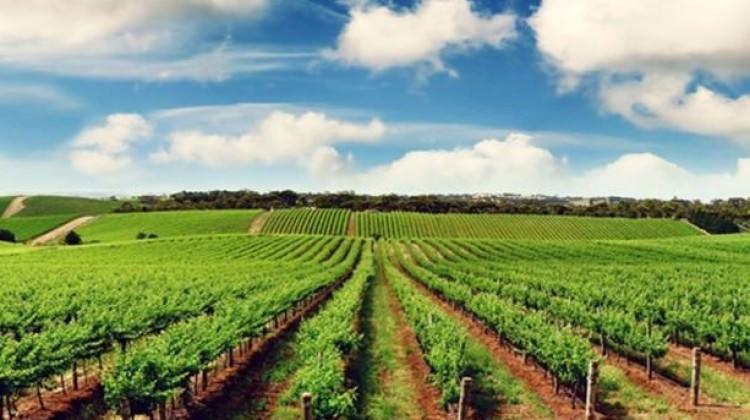 Tarımda güçlü iş birliğinde yeni hedef 2023