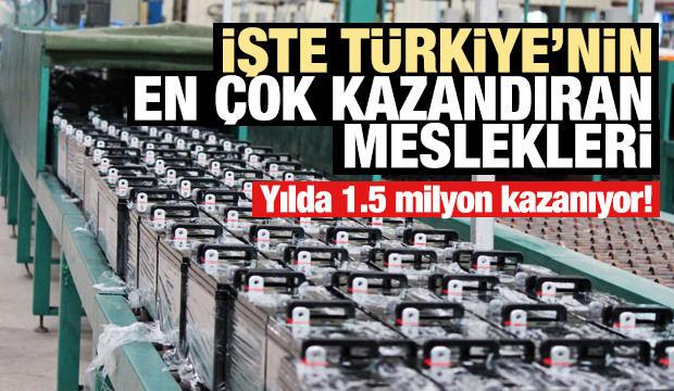 İşte Türkiye'nin en çok kazandıran meslekleri