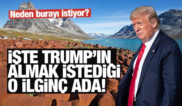 ABD Başkanı Trump'ın satın almak istediği ilginç ada!