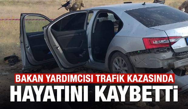 Bakan Yardımcısı trafik kazasında hayatını kaybetti