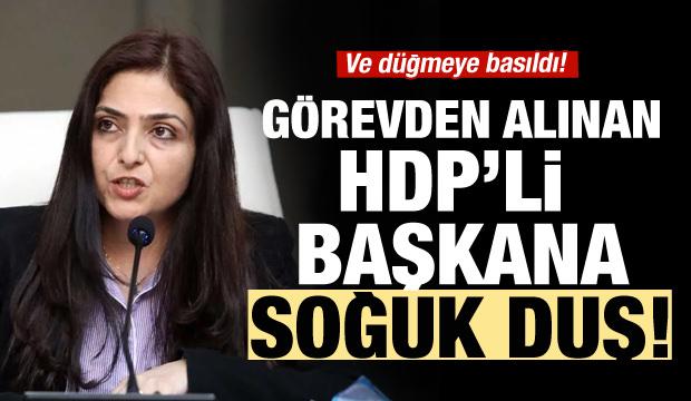 Görevden uzaklaştırılan HDP'li başkana soğuk duş!