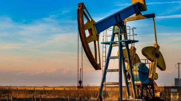 Petrol işletme ruhsatı kararı