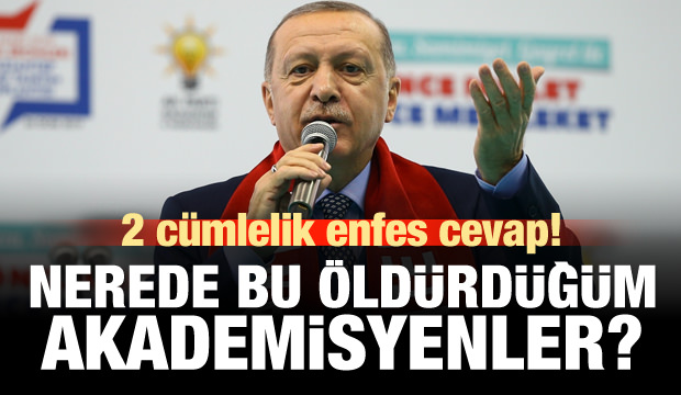 Erdoğan: Nerede bu öldürdüğüm akademisyenler?