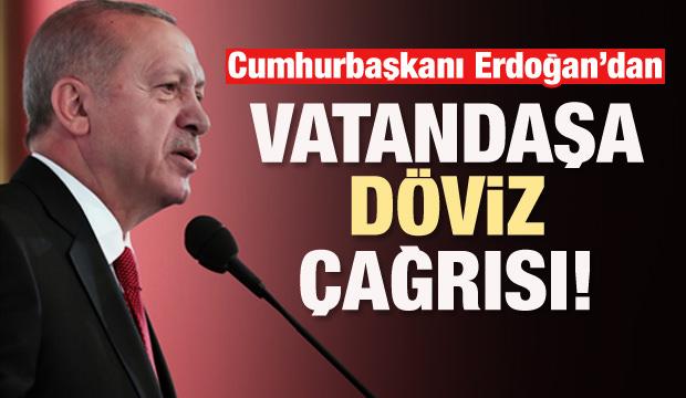 Erdoğan'dan vatandaşa döviz çağrısı!