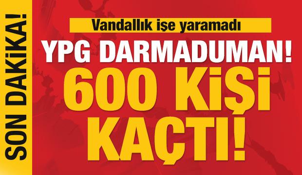 Son dakika: YPG'ye içten çöktü! 600'e yakın terörist firar etti