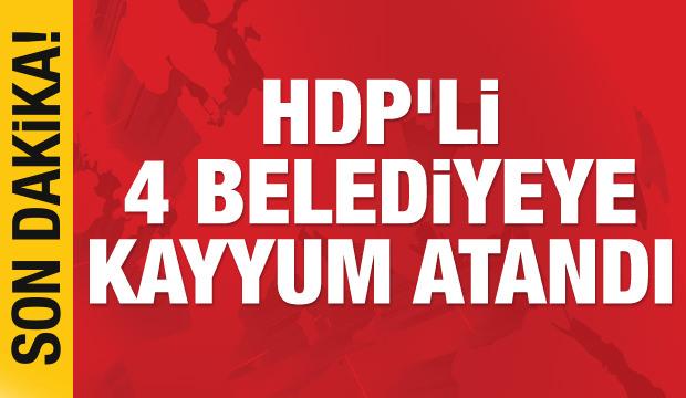 Son dakika haberi: HDP'li 4 belediyeye kayyum atandı