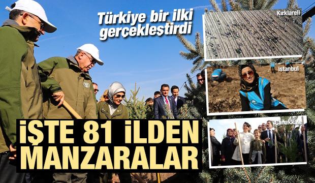 Cumhurbaşkanı Erdoğan ve eşi Emine Erdoğan fidan dikti