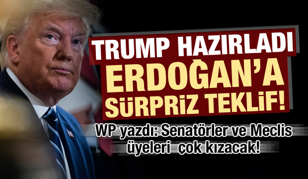 Trump'tan Erdoğan'a sürpriz teklif! ABD Meclis üyeleri çıldıracak