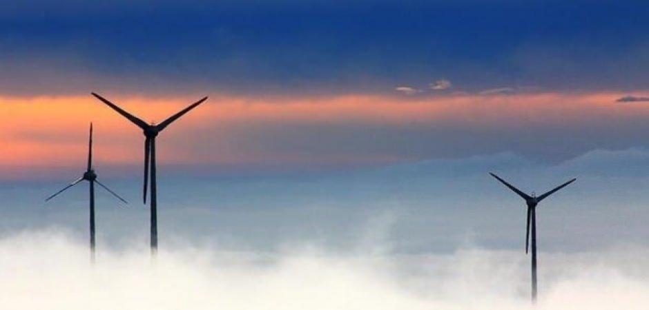 Yabancı Türkiye'de rüzgar ve güneşe koşuyor