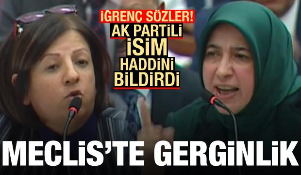 TBMM'de büyük gerginlik! AK Partili isim iğrenç sözlere sert çıktı