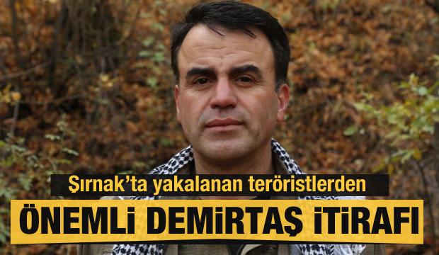 Yakalanan teröristlerden çok önemli Demirtaş itirafı
