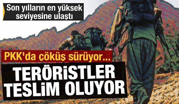 PKK'da çöküş sürüyor... Teröristler güvenlik güçlerine teslim oluyor