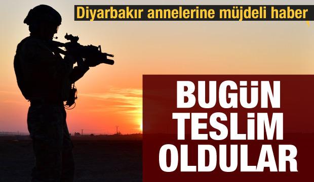 PKK'da çözülme sürüyor: 5 terörist daha teslim oldu