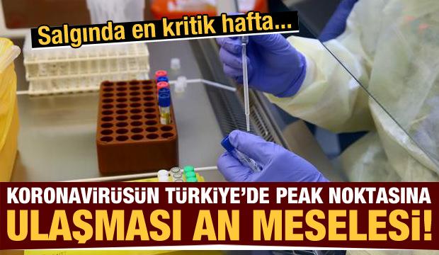 30 Mart Pazartesi gazete manşetleri - Koronanın Türkiye'de peak noktasına ulaşması an meselesi!