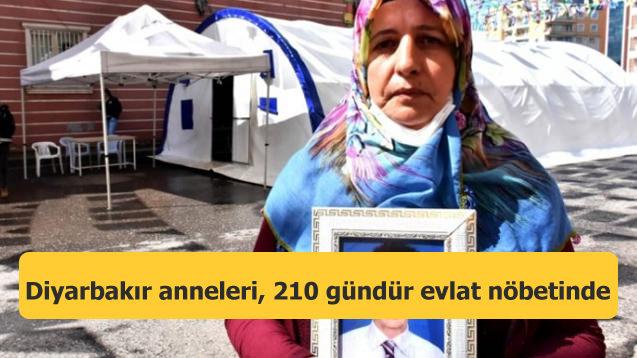 Diyarbakır anneleri, 210 gündür evlat nöbetinde