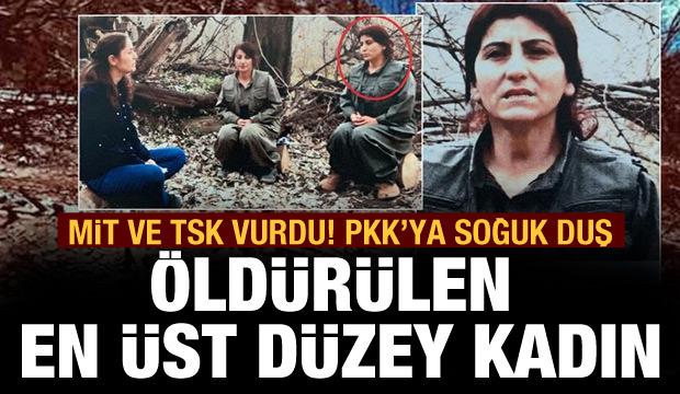 PKK'nın kadın yapılanmasına MİT ve TSK'dan darbe